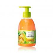 自然奥秘茶树柑橘洗手液